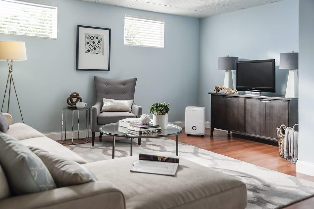 dehumidifier at a living room