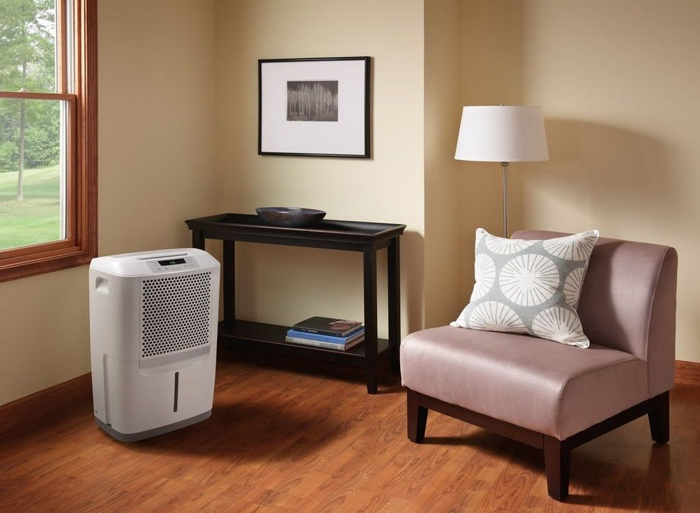 dehumidifier to help molds